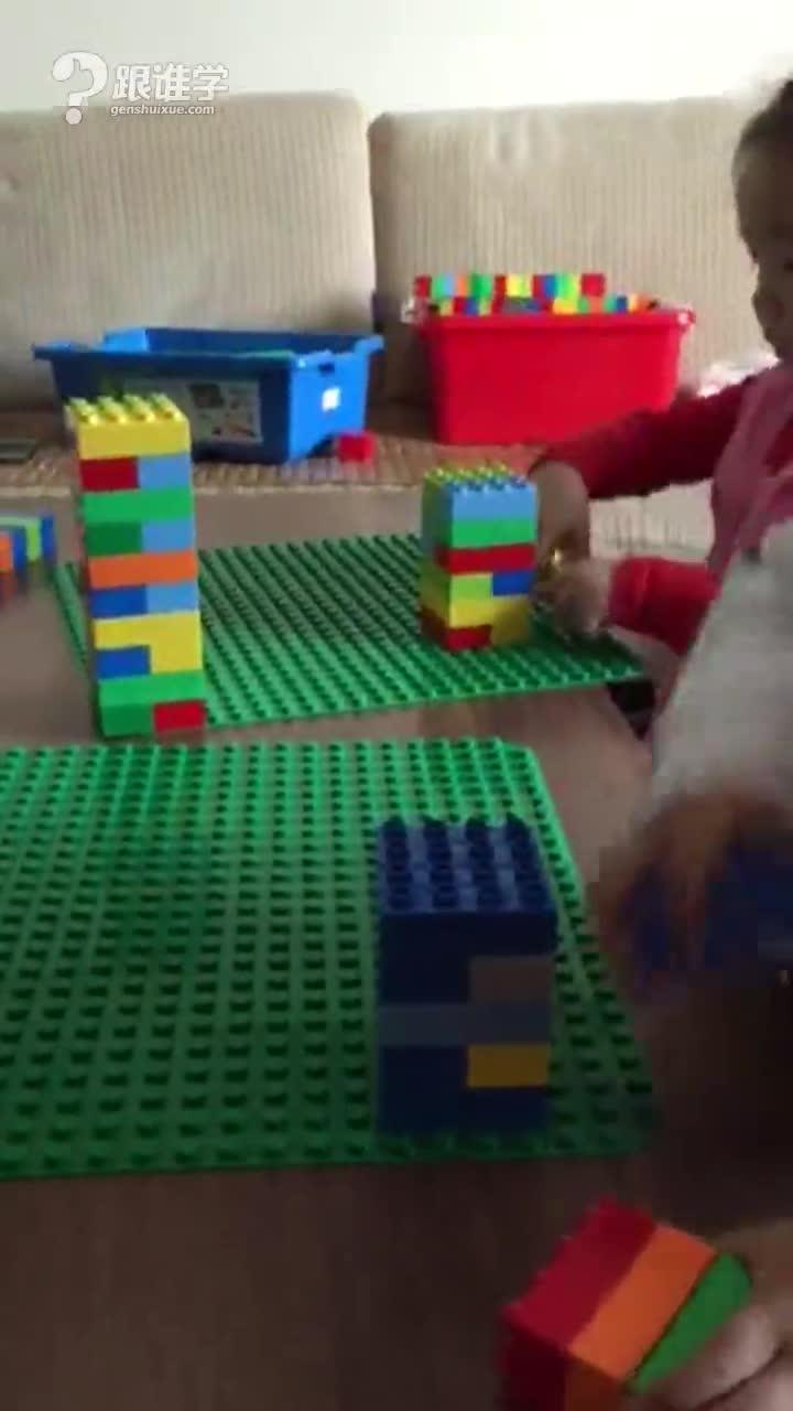 疯狂机器人 马蔺 视频
