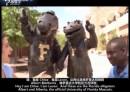美国大学介绍-佛罗里达大学
