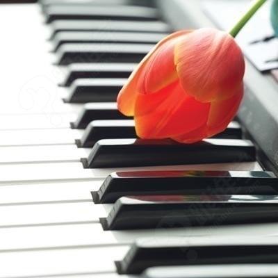 培养儿童钢琴学习兴趣的方法