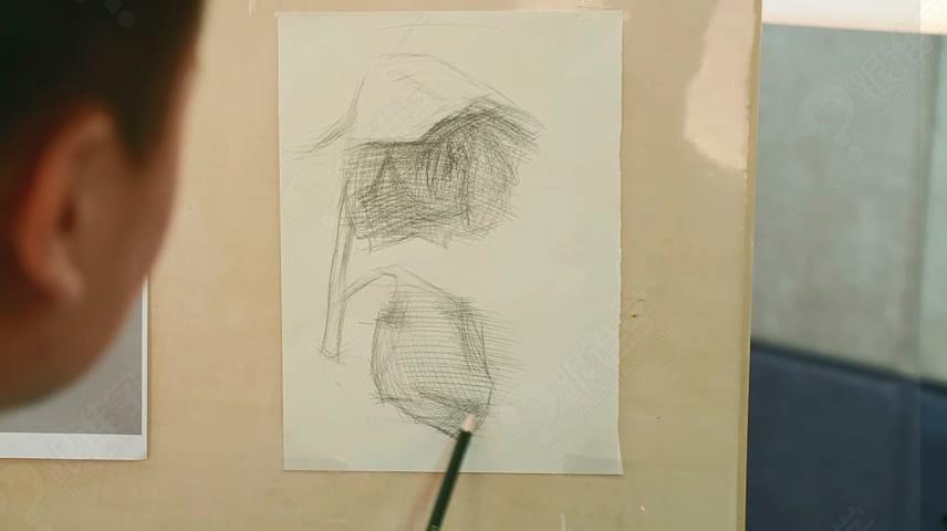 【视频】玫瑰花素描教程