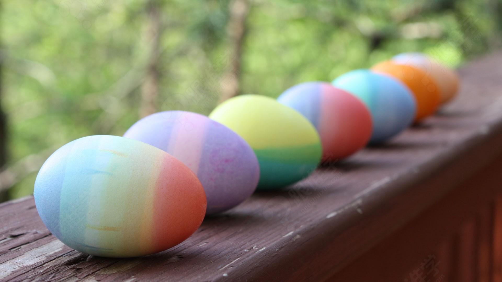NDI ECA丨复活节 彩蛋大行动