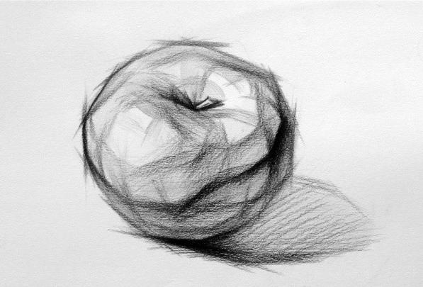 水果素描画 单个结构