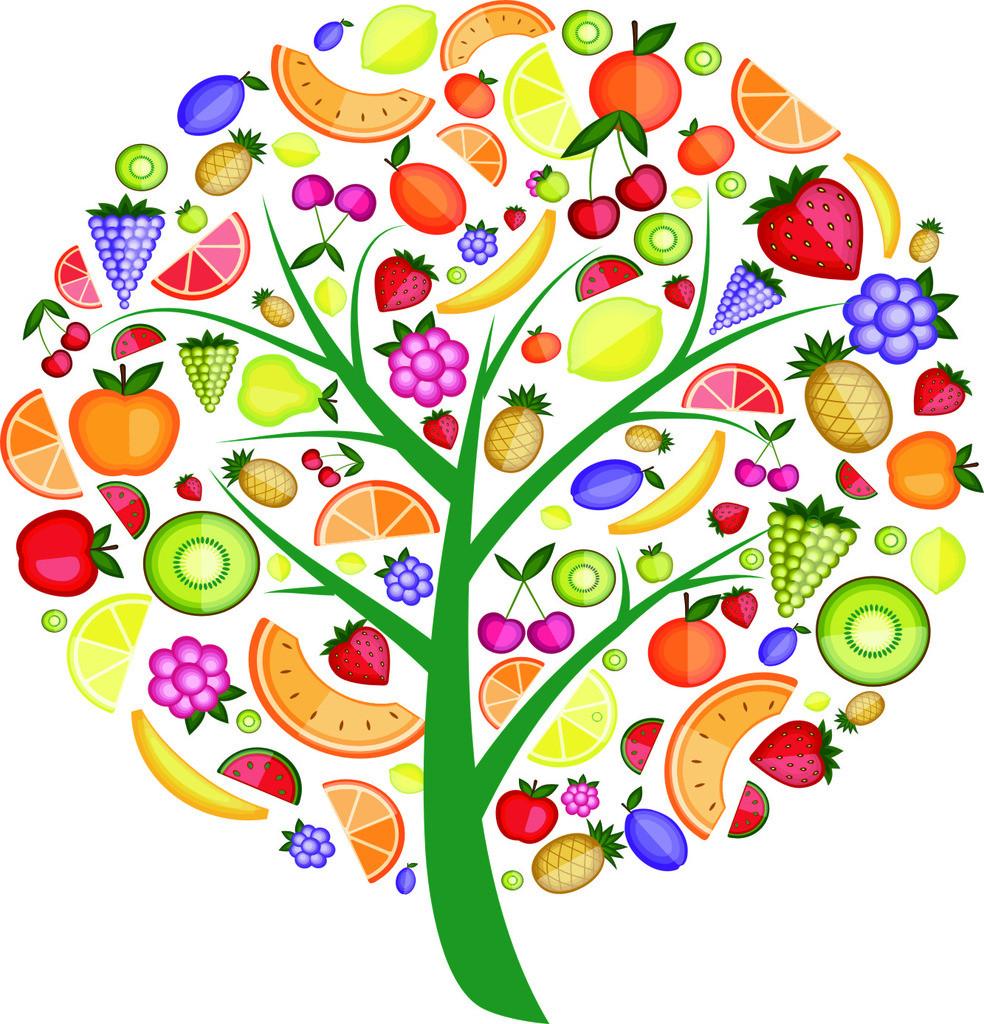 各种各样的水果简笔画-十月活动 精彩纷呈