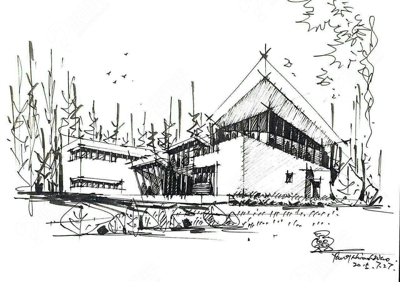 建筑学手绘树配景