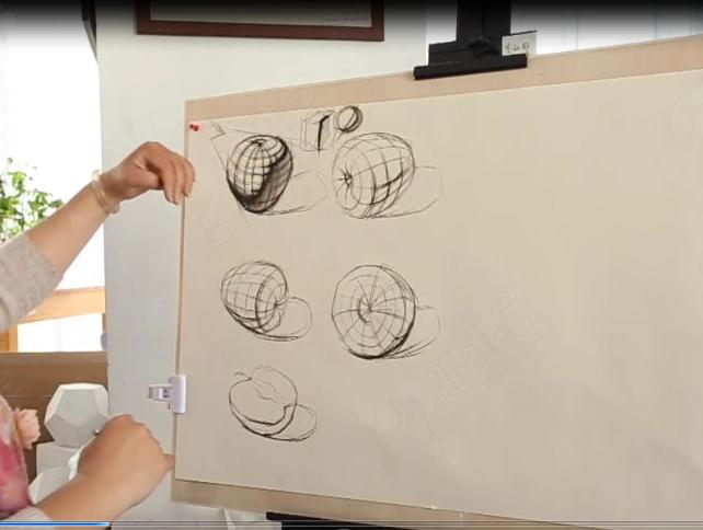马老师系列素描课程之苹果的结构理解
