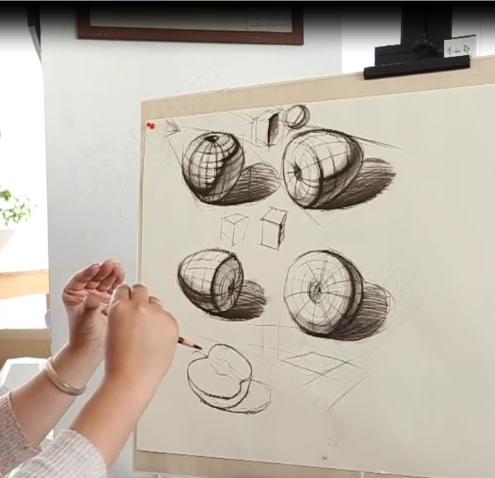 【视频】马老师系列素描课程之苹果的结构理解