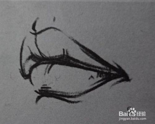 速写局部嘴巴线形的画法 听语音