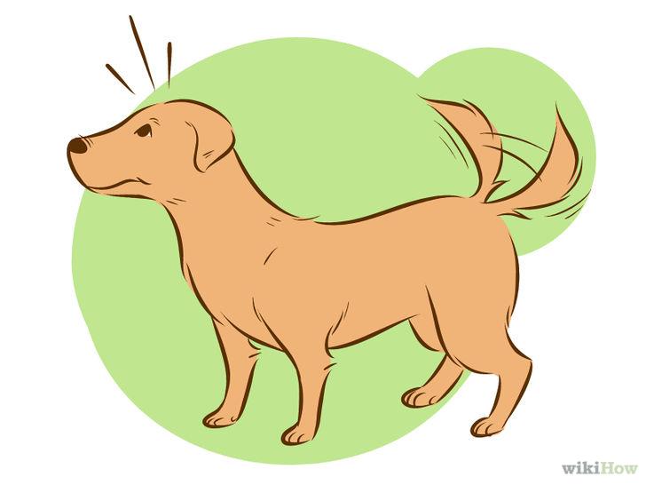 狗狗侧面矢量图
